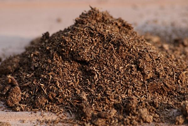 Кокосовый торф: область применение, отличительные характеристики