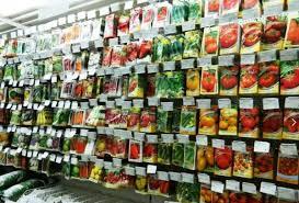 Что учесть при выборе магазина семян