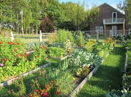 Что учесть при обустройстве сада